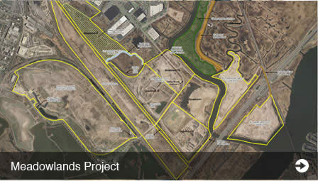 featured-project-meadowlands